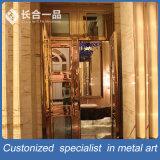 De aangepaste Beste Kwaliteit nam de Gouden Deur van het Staal voor KTV/Hotel toe