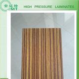Los paneles laminados/poste de la ducha que forma HPL