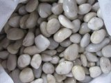 Ghiaia bianca, caduto Ciottolo, Macchina-Made Pebble, River Stone, Snow White Pebble