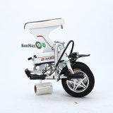 Fabricación de China plegable la mini E-Bici eléctrica