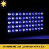 水のDimmable 165W LEDのアクアリウムの淡いブルーの白い礁珊瑚タンクアクアリウムLEDランプ