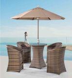 우산을%s 가진 바 의자에 있는 파나마 옥외 란