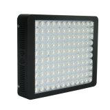 2017 la más nueva 600W eficacia alta innovadora LED crece la luz