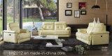 Sofà domestico del cuoio genuino della mobilia (CK-808)