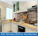 Armadio da cucina di legno solido modulare di disegno moderno 2016