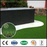 Grama natural de Landingscaping do olhar de Sunwing DIY para o jardim