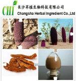 Выдержка Cynomorium Coccineum завода продукта секса естественная