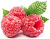 손실 Wieght를 위한 나무 딸기 추출 98% 나무 딸기 케톤