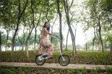 """16 """" 숙녀를 위한 소형 접히는 자전거 경량 자전거"""