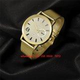 La montre Fs468 de vente des hommes chauds beaux d'acier inoxydable