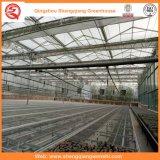 Feuille de PC/structure métallique serre chaude en verre/film plastique pour l'agriculture/film publicitaire