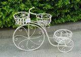 Support classique de planteur de bicyclette de 3 couches