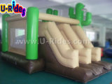 Desert e Cactus Inflatable combo bounce