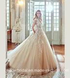 Champagne-Brautkleid-Tulle-Spitze-Hochzeits-Kleid 2017 R201708