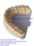 Крона циркония с фарфором или полный Zirconia при по-разному цветы сделанные в лаборатории Китая зубоврачебной