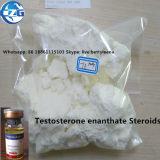 보디 빌딩을%s E 주사 가능한 스테로이드 호르몬 분말 테스토스테론 Enanthate를 시험하십시오