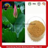 ロータス葉、精液Nelumbinisからのロータス葉のエキスの試供品の/Plantのエキスの粉