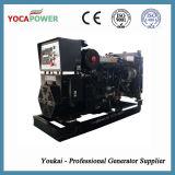 kleines Generator-Kraftwerk des Dieselmotor-20kw elektrisches