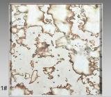 De antieke Spiegel van het Glas van de Spiegel van het Patroon van het Glas van de Spiegel Witte Uitstekende Antieke