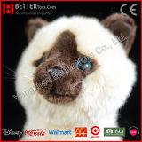Jouet réaliste mou réaliste de chat de peluche de peluche de chat siamois d'ASTM