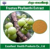 자연적인 Phyllanthus Emblica 추출 분말