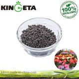 Il carbonio di Kingeta ha basato il fertilizzante microbico composto del granello del fertilizzante