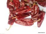 S/poivron rouges déshydratés