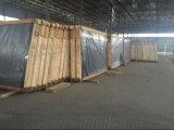 almacén teñido 3-10m m del vidrio de flotador