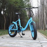 bici plegable/Ebike de 20inch 500W E