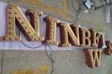 塗られるカスタマイズされた金属はハウジングLEDの電球の文字のロゴの印を殻から取り出す