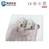 3匹の犬PUの革折る記憶の腰掛け(SCFT00002)