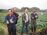 Fertilizante orgânico de Unigrow na plantação da pimenta e do tomate