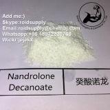 In het groot Deca/Nandrolone het Ruwe Poeder Deca/Durabolin CAS 360-70-3 van Decanoate/Nandrolone
