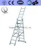 Échelle droite de /Extension/échelle en aluminium d'échafaudage pour la construction