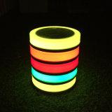 Luz solar del paisaje del LED con el color que cambia para el jardín