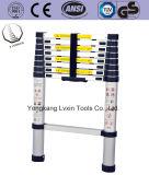 Qualität-teleskopische Strichleiter von 6steps