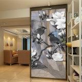 Vidrio de seda colorido del vidrio laminado/arte del espejo para la decoración