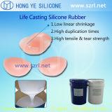Gomma di silicone del pezzo fuso di vita per il reggiseno falso in Cina