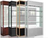 Qualitäts-Metallausstellungsstand (LFDS0051)