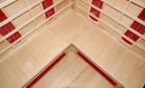 2016 Nueva sauna de infrarrojos lejano de lujo del diseño (SEK-B3C)