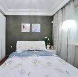 Camera d'acciaio chiara residenziale della villa di basso costo con il disegno personalizzato