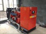 Generatore del biogas/unità di cogenerazione biogas Genset/Biogas CHP/Biogas di Cummins