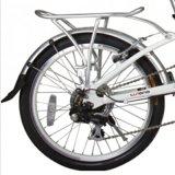 電気バイク(LN20F06)を折るブラシレスハブモーター