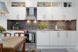De typische Keukenkast van het Ontwerp voor Australië