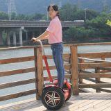 Scooter de l'équilibre E d'individu avec le scooter électrique de la Chine de 2 roues