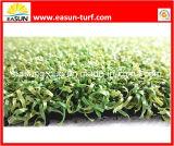 Synthetisches Gras für Sport (SW1633212)