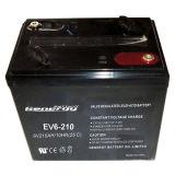 La batterie la meilleure de chariot de golf/batterie de grande capacité (EV6-210)
