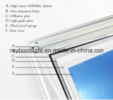 Nuovo indicatore luminoso di comitato del fornitore 40W LED della Cina di modo (RB-PL-P6060A)