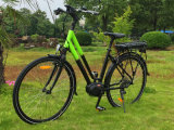Madame Road Electric Bicycle de 36V 250W avec le moteur central