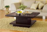 Горячая продавая домашняя мебель для таблицы /Tea кофеего (DMEA007)